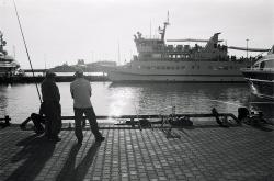 Image-(35)