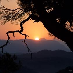 Рассвет над Орлиными скалами #3