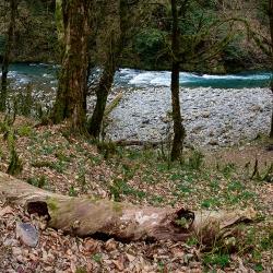 Река-Сочи-25-2017-03-25