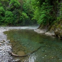 Река Агва впадает в реку Сочи.