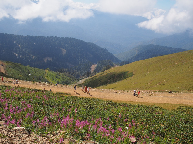 Панорамы Кавказа, Роза Пик