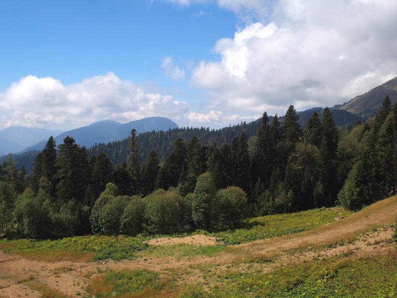 Панорамы Кавказа