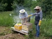 Пчеловоды Башкирии