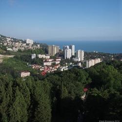 Сочи, июнь 2014