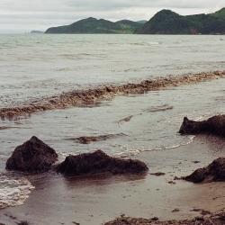 Приморский край, Хасанский район