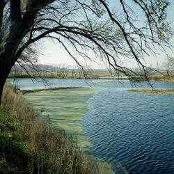 Приморский край, Уссурийский район
