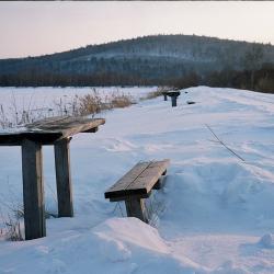 Приморский край, Уссурийский район, 2005 год.