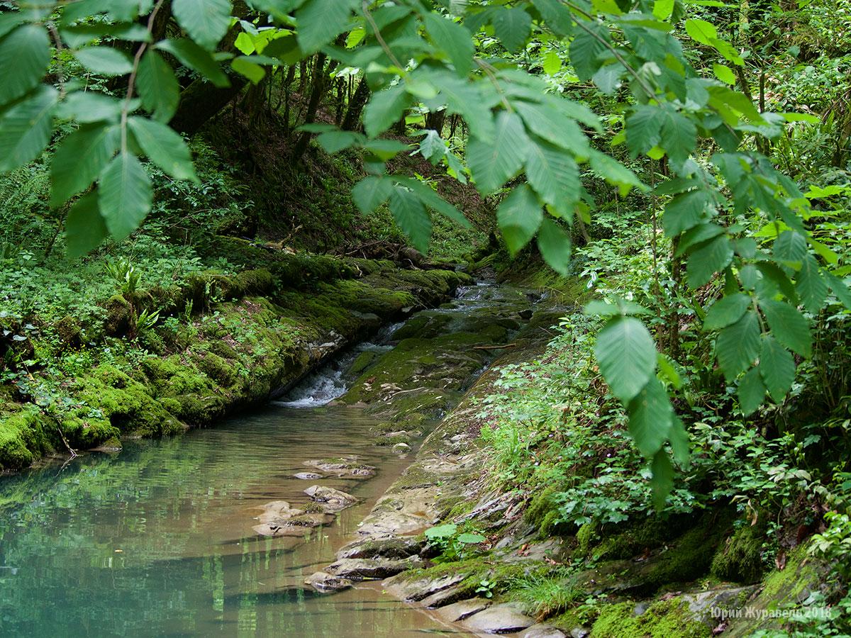 Река Безуменка